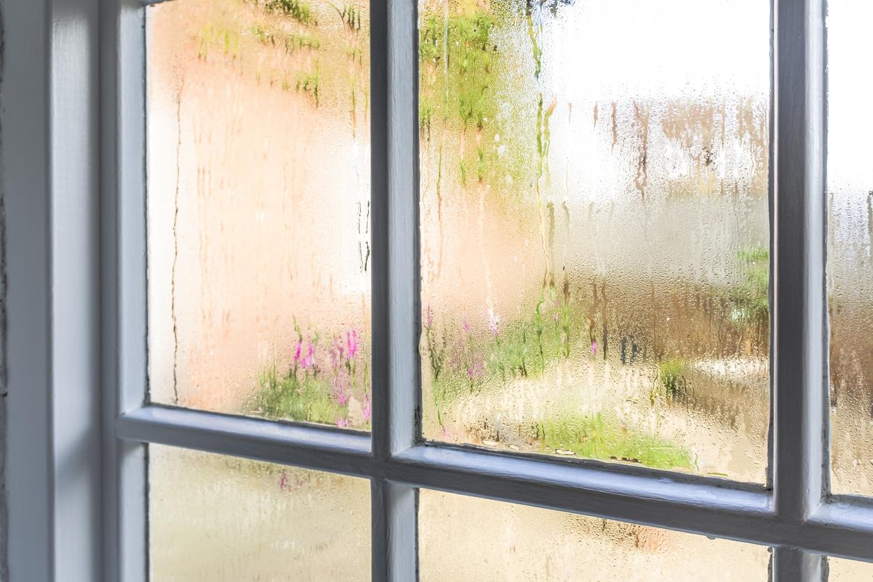 Condensation on old window panes